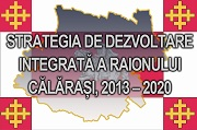 Strategia de dezvoltare integrata a raio